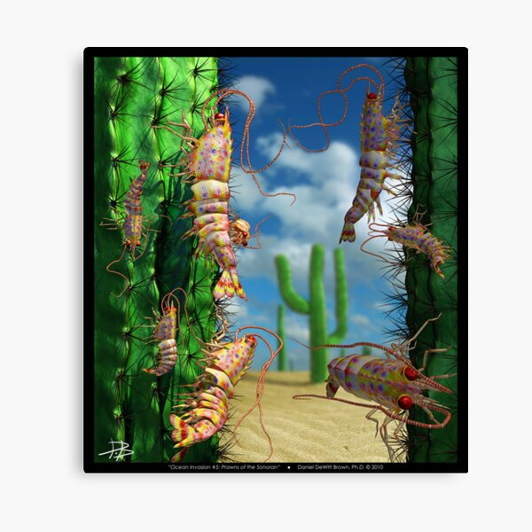 Ocean Invasion #5: Prawns of the Sonoran Canvas Print