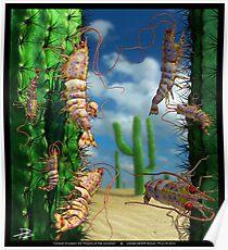 Ocean Invasion #5: Prawns of the Sonoran Poster