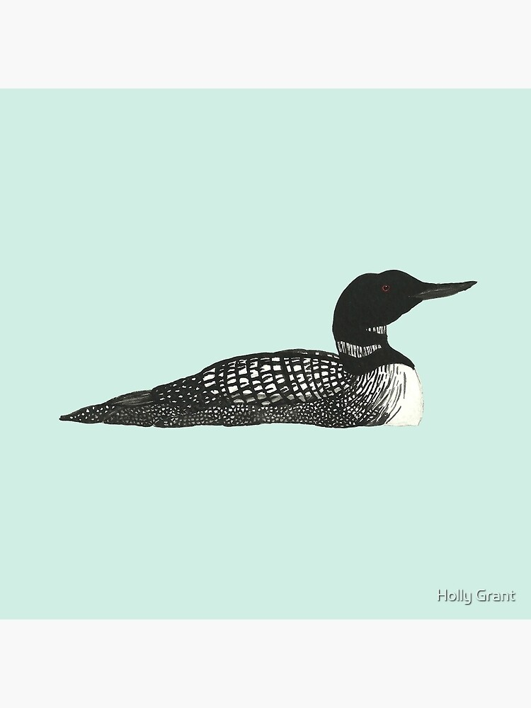 Common Loon by LadyElizabeth