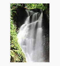 Glenariff Forest Photographic Print