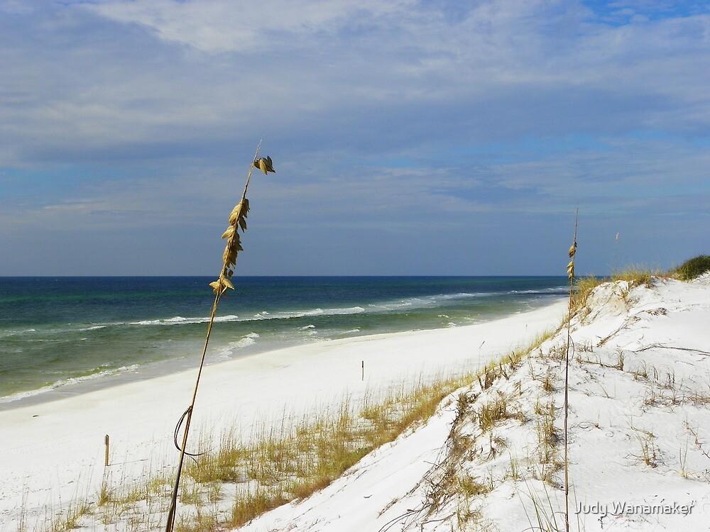 Beach Under Siege by Judy Wanamaker