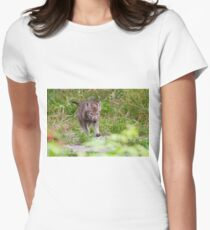 Timber Wolf Pup Women's Fitted T-Shirt