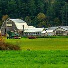 A Camano Island Farm by Bryan D. Spellman