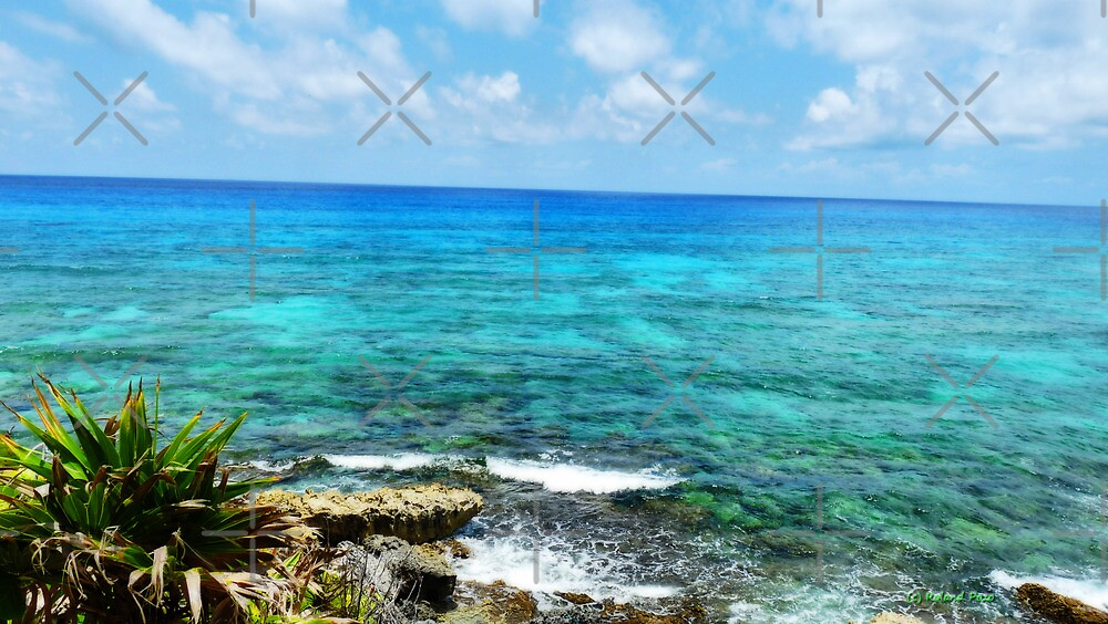 The Waters of Cozumel by photorolandi