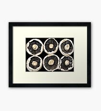 Rows of Mushroom Caps Framed Print