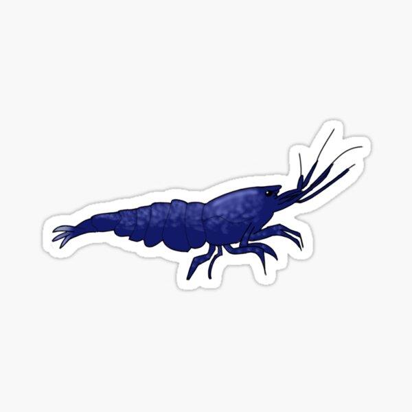 Blue Dream Shrimp Sticker