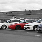 Friends at Wakefield Park Raceway by GoldZilla