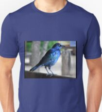 Blue Starling T-Shirt