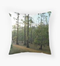 Sundown Swamp - Sam Houston Park Throw Pillow