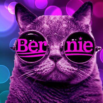 Kühle Katze 4 Bernie von Thelittlelord
