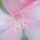 Petals in the Mist by BShirey