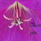 Lilac Notes by sarnia2