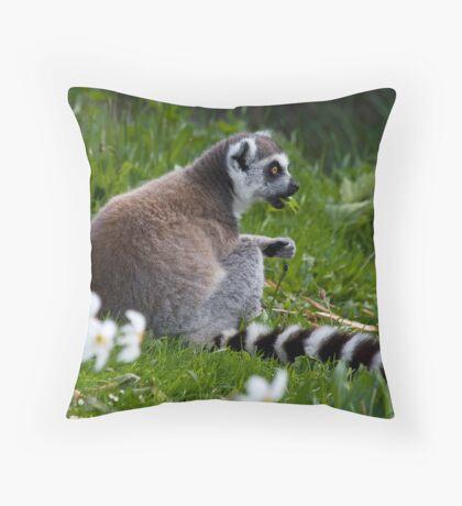 Lunching Lemur Throw Pillow