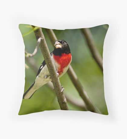Rose Breasted Grosbeak - Gatineau, Quebec Throw Pillow