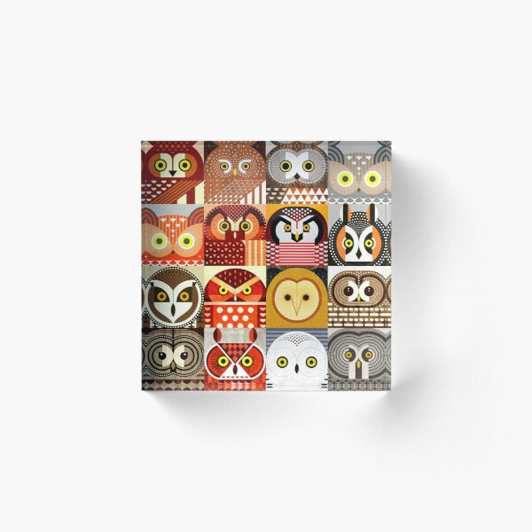 North American Owls Acrylic Block