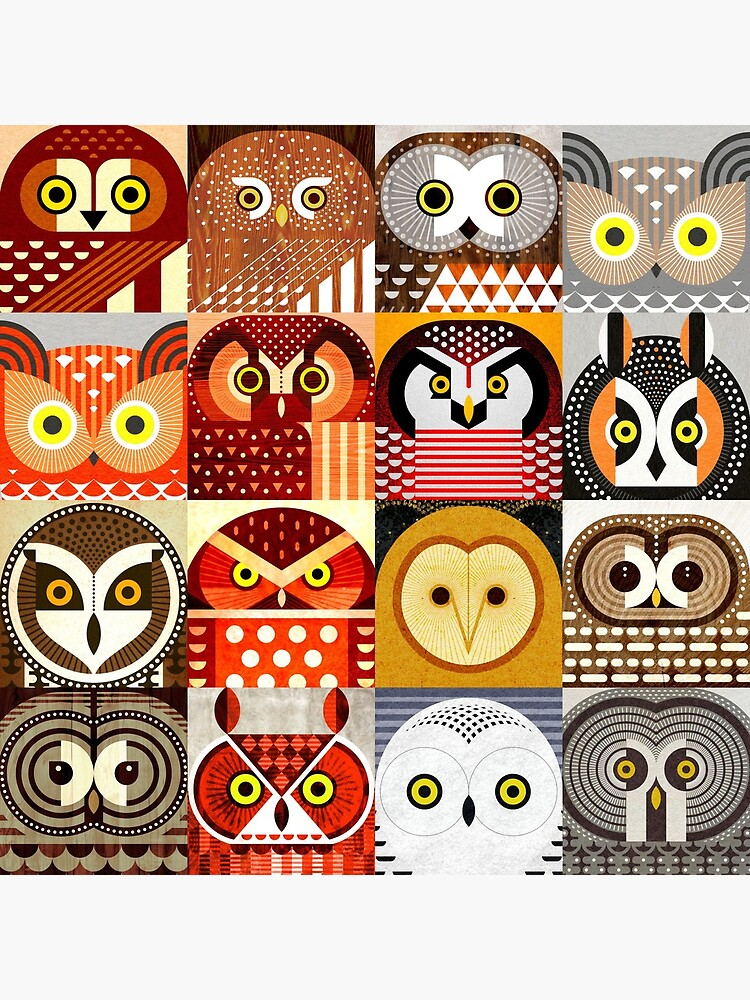 North American Owls by scottpartridge