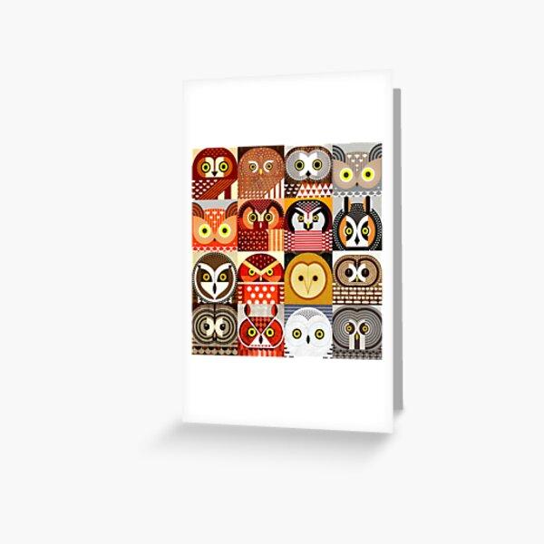 North American Owls Greeting Card