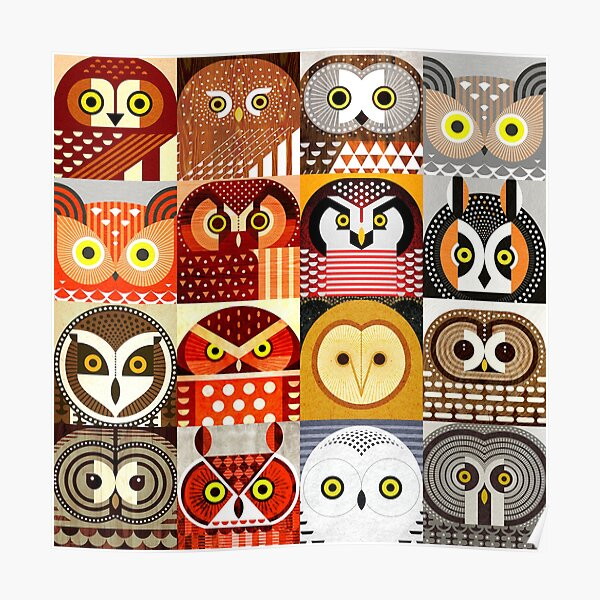 North American Owls Poster