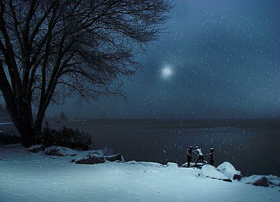 Moonlight Romp by John Poon