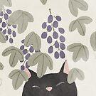 Katze im Sommer von jjsgarden