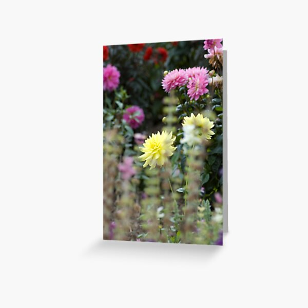 Flowers in an English Country Garden Greeting Card