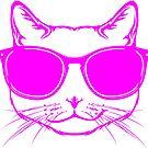 Awesome cat wearning sunglasses by yetileti