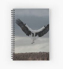 Spread your wings and land  Spiral Notebook