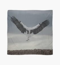 Spread your wings and land  Scarf