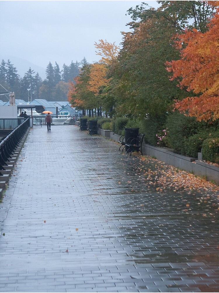 Heading home in the rain, Vancouver, Canada, 2007 by chrisculy
