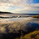 Reflections shimmer on the water at Sarah Island, Tasmania by Elana Bailey