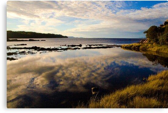Reflections shimmer on the water at Sarah Island, Tasmania by Elana Bailey