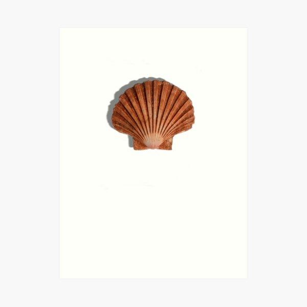 Sea shell t-shirt, summer 2019 shirt Art Print