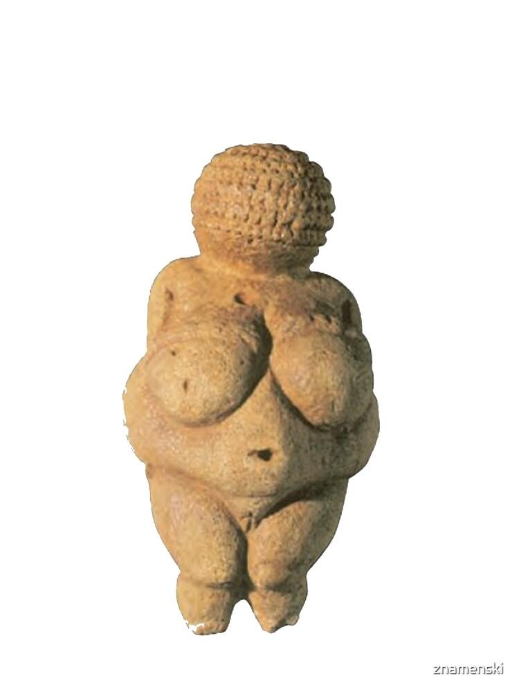 #Venus of #Willendorf #artifact sculpture art figurine statue humanbody #VenusofWillendorf by znamenski