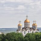 Cathedral of the Assumption or Dormition Cathedral, Vladimir, Russia by Svetlana Korneliuk