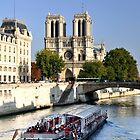 Notre Dame von Lisa Williams