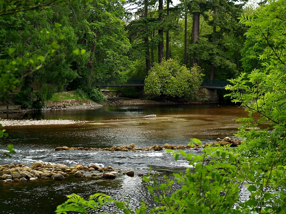 A View Of The River Ness In Scotland. by Aj Finan