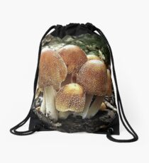 Salted Drawstring Bag
