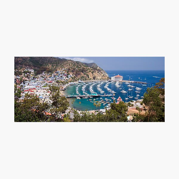 Catalina by the Sea Photographic Print