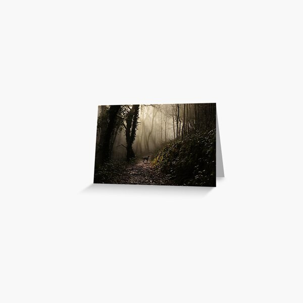 Lurcher in the mist Greeting Card