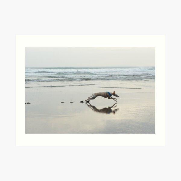 Beach Lurcher Art Print