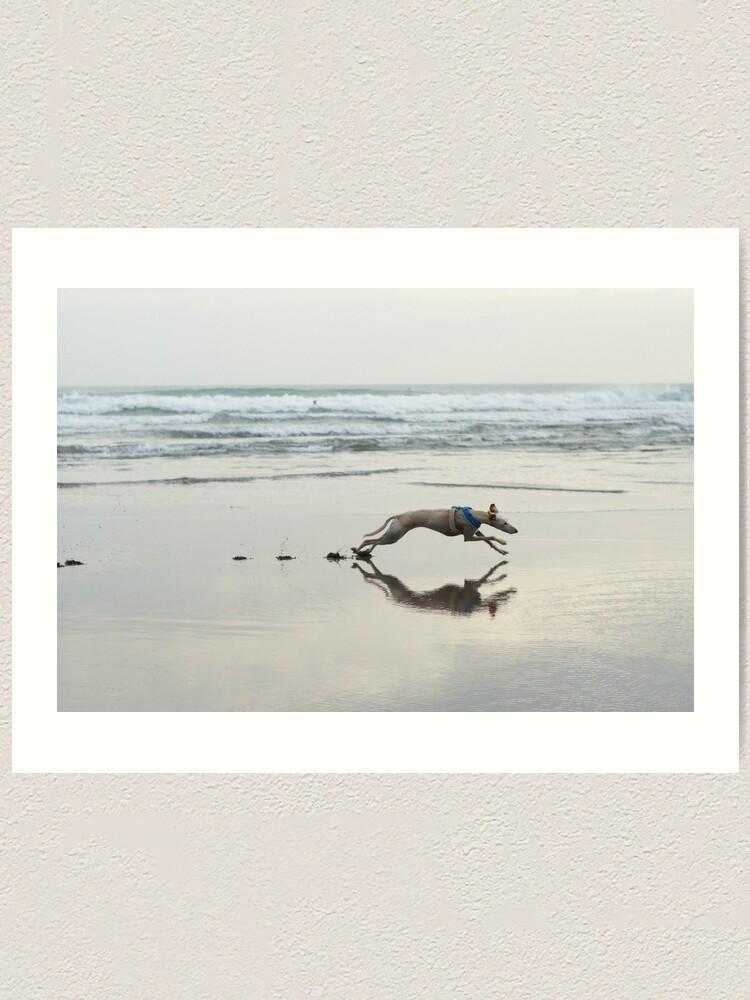 Alternate view of Beach Lurcher Art Print