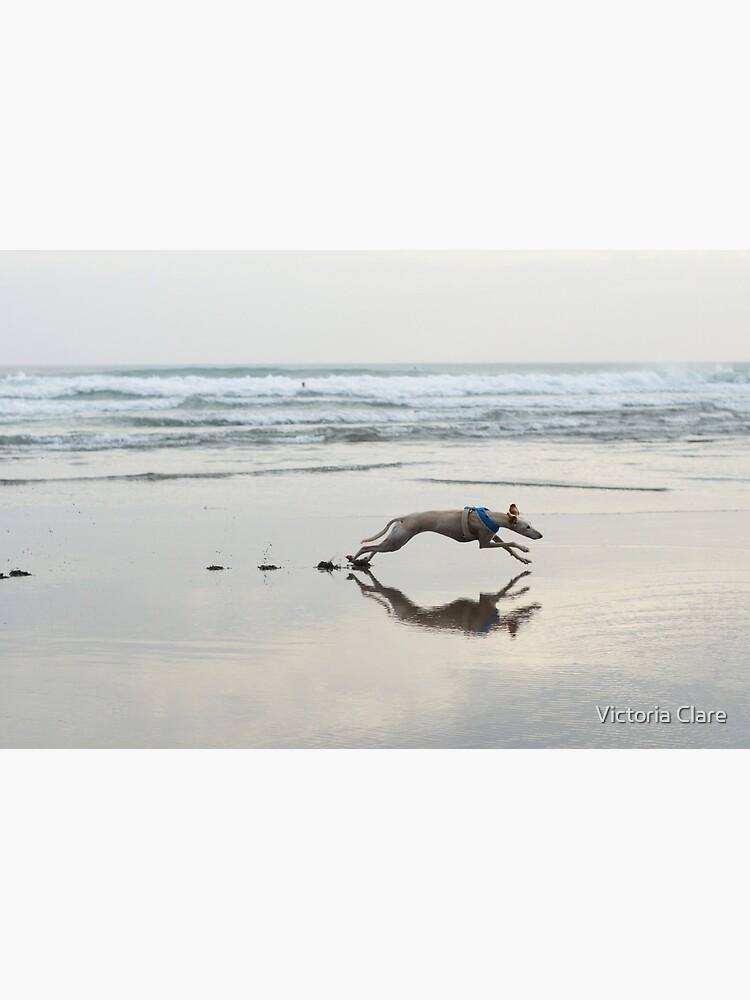 Beach Lurcher by artofcycas