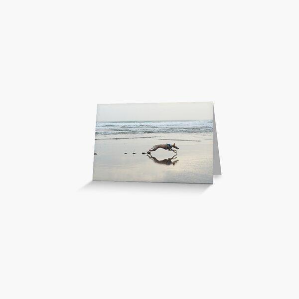 Beach Lurcher Greeting Card