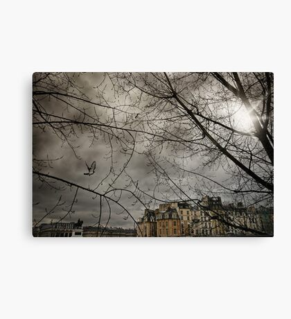 Pigeon over Pont neuf Canvas Print