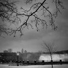 Niagara Falls in winter by laurentlesax