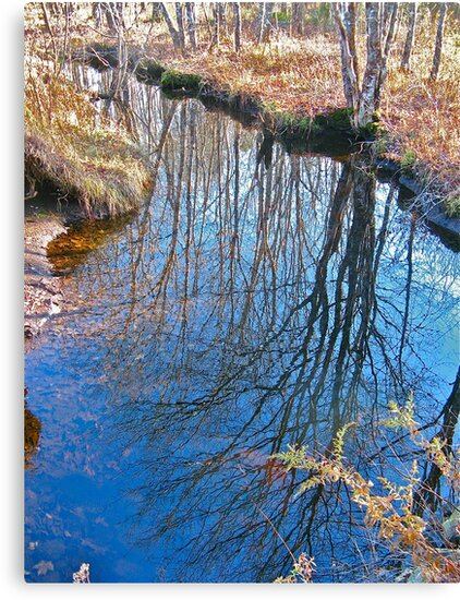 Reflections in the Stream by David Davies