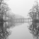 «Puente del lago de primavera en la niebla» de Sean Sweeney