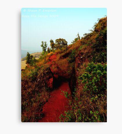 Carving a Path (Karnataka, India) Canvas Print
