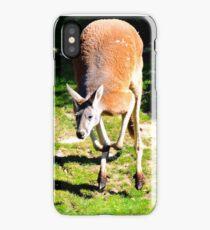 Leaping Kangaroo iPhone Case/Skin
