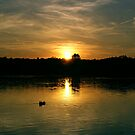 The Sunset by Mike Topley